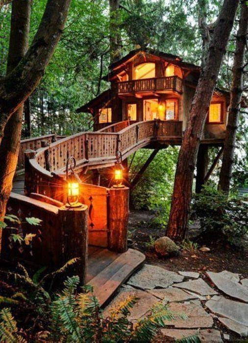 tree house retreat